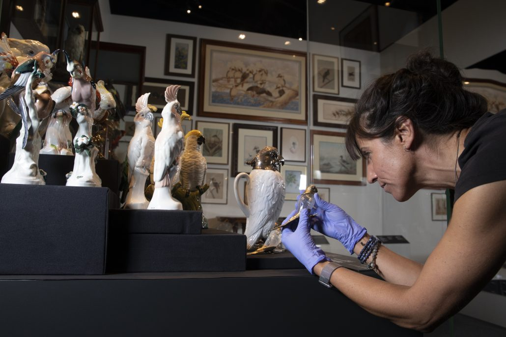 rare treasures on display from national museum of australia's largest acquisition