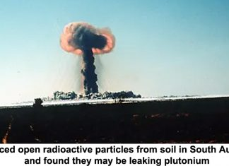 we sliced open radioactive particles from soil in south australia and found they may be leaking plutonium