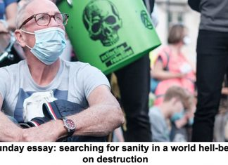 sunday essay: searching for sanity in a world hell-bent on destruction