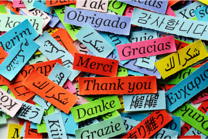 the importance of multilingual sales to small businesses
