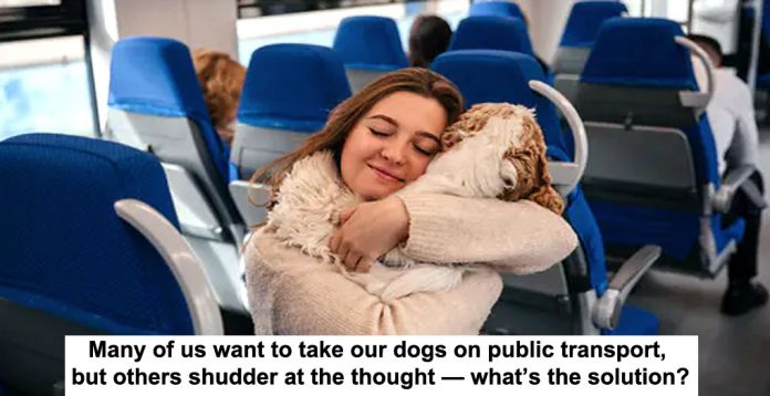 many of us want to take our dogs on public transport, but others shudder at the thought — what's the solution?