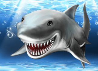 """""""get out of the water!"""" monster shark movies massacre shark conservation"""