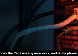 how does the pegasus spyware work, and is my phone at risk?