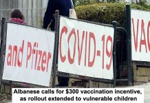 Albanese calls for vaccination incentive as rollout extended to vulnerable children header