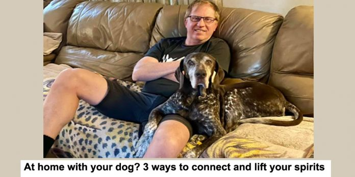 at home with your dog? 3 ways to connect and lift your spirits
