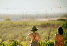 wine-free fun – 5 things to do in wine country that don't involve tasting wine