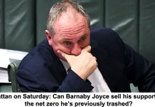 grattan on saturday: can barnaby joyce sell his supporters the net zero he's previously trashed?