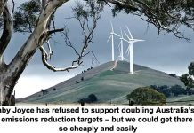 barnaby joyce has refused to support doubling australia's 2030 emissions reduction targets – but we could get there so cheaply and easily